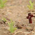 Servir Dieu dans la confiance